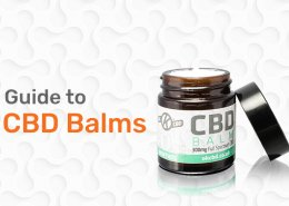 Guide to CBD Balms Preview Image