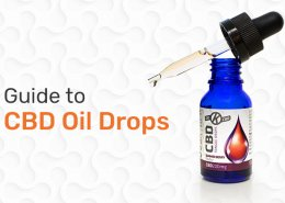 Guide to CBD Oil Drops Blog Preview Image
